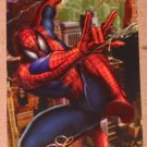 1994 Flair Marvel Universe (Fleer) Card #5- Spider-Man VG