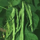White Kidney Bean Powder Extract