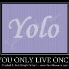 YoLo - You Only Live Once - Afghan Crochet Graph Pattern Chart