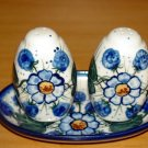 Polish Pottery Salt and Pepper WR Unikat Signature Spring Morn Artist Signed Boleslawiec Poland