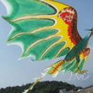 3D AVATAR DRAGON PTEROSAUR KITE FR PANDORA ART DECO TOY