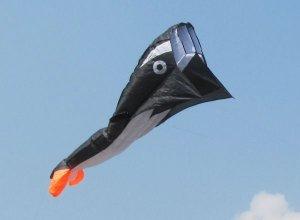 SKY AQUARIUM 2M 3D HUGE PARAFOIL SHARK KITE FLYING