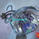 FOR PANASONIC HS230AR08-6E 3LCD Projector Replacement Lamp Bulb Only