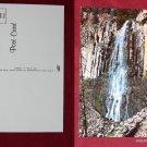 Bozeman Montana MT Palisade Water Falls Hyalite Canyon Photo VINTAGE POSTCARD PC