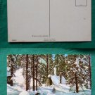 POSTCARD VINTAGE SNOW COVERED CABIN IN THE WOODS