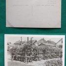 HUGE TOMATO PLANT GARDEN OLD RPPC REAL PHOTO POSTCARD
