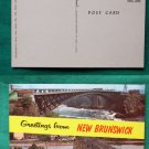 GREETINGS FROM NEW BRUNSWICK SAINT JOHN RIVER POSTCARD