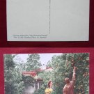 El Encanto Enchanted Hotel Orange Tree View Old VINTAGE POSTCARD PC