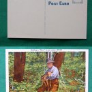 OLD MAN HOLDING DEER IN WOODS VTG VINTAGE POSTCARD