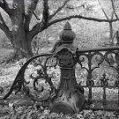 Black and White Photo 8X10 Central Park New York Bridge 27 Balustrade