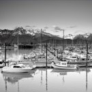 Black and White Photo 8X10 Marina Seward Alaska
