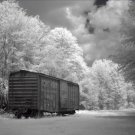 Black and White Photo 8X10 Old Boxcar Selma Alabama