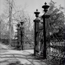 Black and White Photo 8X10 Cast Iron Gate Airliewood