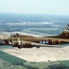 B-17 Flying Fortress Shoo Shoo Shoo Baby Photograph 8X12