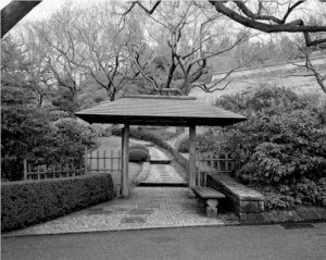 Black and White Photo 8X10 Terrace Gate Kykuit Japanese Garden New York