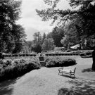 Black and White Photo 8X10 Bench Terrace Gardens Vermont