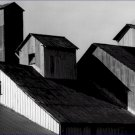 Black and White Photo 8X10 Corrugated Steel Rooftops