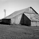 Black and White Photo 8X10 Delapidated barn next to corn field windmill