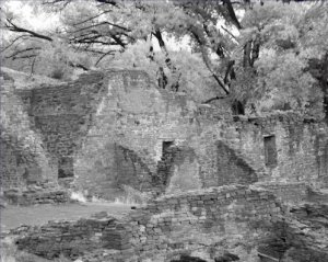 Black and White Photo 8X10 Chaco Canyon Aztec Ruins in the Fall
