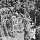Black and White Photo 8X10 Thors Hammer Bryce Canyon