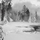 Black and White Photo 8X12 Upper Geyser Basin in winter