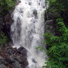 Acadia National Park Summer Waterfall 8X10 Photograph