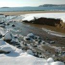 Acadia National Park Sand Beach 11x14 Photograph