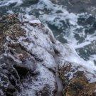 Acadia National Park Frozen Sea 8X10 Photograph