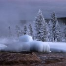 Yellowstone National Park Pink Cone Geyser 8X10 Photograph
