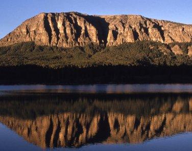 Yellowstone National Park Bridger Lake 11x14 Photograph