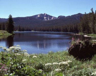 Yellowstone National Park Sylvan Lake 8X10 Photograph
