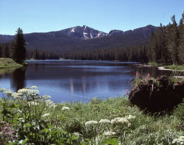 Yellowstone National Park Sylvan Lake 12x16 Canvas