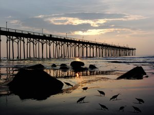 Sunrise fishing Pier Carolina Beach