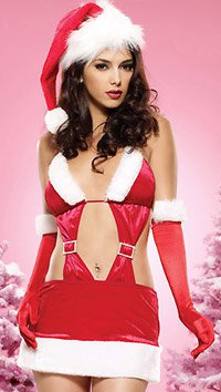 Velvet Sexy Christmas Holiday Costume