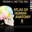 Atlas of Human Anatomy by Frank H. Netter (2010, Other, Mixed media product)
