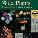A Field Guide to Edible Wild Plants by Lee Allen Peterson (1999, Paperback)