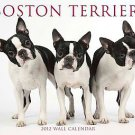 Boston Terriers 2012 Calendar by Willow Creek Press (2011, Calendar)