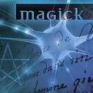 Brain Magick: Exercises in Meta-magick and Invocation by Philip H. Farber (20...