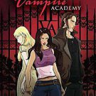Vampire Academy by Leigh Dragoon (2011, Paperback, Original)