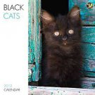 Black Cats 2012 Calendar by TF Publishing (2011, Calendar)