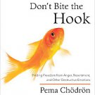 Don't Bite the Hook: Finding Freedom from Anger, Resentment, and Other Destru...