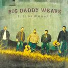 Fields of Grace by Big Daddy Weave (CD, Jun-2005, Fervent Records)