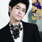 Handmade Black Ribbon Smart Mens Wedding Pre Tied Crystal Necktie Bow Tie