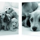 Puppies Love, Gallery Wrapped Diptychs 2 Panel Modern Wall Art Decoration #600226