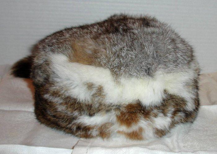 Rabbit fur cap with Raccoon tail