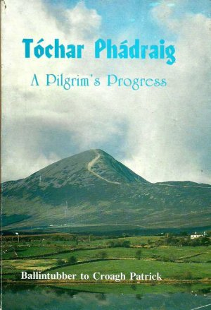 Tóchar Phádraig (Patrick's Causeway)