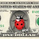 LADYBUG on REAL Dollar Bill - Collectible Custom Cash Money Lady Bug