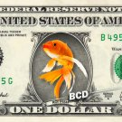 GOLDEN KOI FISH on REAL Dollar Bill - Collectible Custom Cash Money