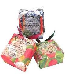 Nesti Dante Herbal Soaps camelia & cinnamon 200g