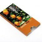 Sugar Free chewing gum with mastiha and Tangerine (10 pcs blister )